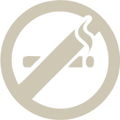Icon  no smoking